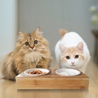 Amazon Hot Sale Ceramic Bowl Pet Dog Bamboo Wooden Elevated Stand Feeder Cat Bowls Dining Table with Double Cat Bowls