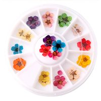 6cm 3d Japanese Nail Flower Designs Wheel Accessory Natural Real Plum Dry Flower Nail Art Decoration For UV Gel Acrylic Nail Art