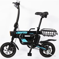 small size foldable lithium battery 250W 48V 12 inch 10Ah E-bike electric bicycle