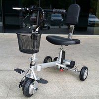 Wholesale 350 loading folding disabled3 wheel electric bicycle  with CE