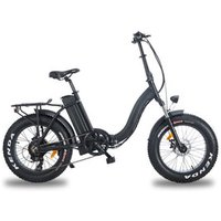 MTB 20 inch 500W Fat Tire Electric Folding Bicycle Cruiser Bike for Beach Mountain and Snowfiled