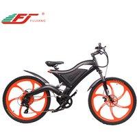 2019 hot selling 500w heavy duty electric bicycle/36 mtb electric bike EN15194