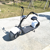 60v800w 1000W cityCoco two wheel electric scooter self balancing /fat tire electric bike/ adults electric motorcycle