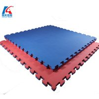 '40mm Gym Wrestling Aikido Floor Tatami Mat