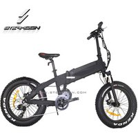Eagle in wind 20 inch folding electric bike lithium battery foldable electric bicycle ebike with mid drive motor