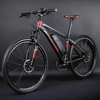 Customized mountain bike 500W-1000W e bike motor electric bicycle