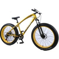 24 inch cheap adult 7 variable speed sandy beaches 4.0 fat tire mountain bike bicycle