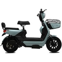 New products big two wheels citycoco 1000W 60V electric bicycle e bike/ electric motorcycle