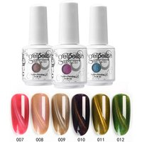 Private Label 3D Chameleon Magic Magnetic Cats Eye Color UV Gel Nail Polish