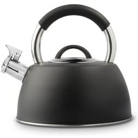 2.2 L Stainless Steel Stovetop Kettle