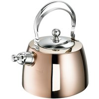 Zora 2L Stainless Steel Whistling Stovetop Kettle