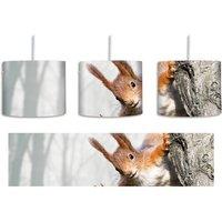 Curious Red Squirrel 1 Light Drum Pendant