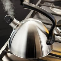 Leuven 1.6 L Stainless Steel Whistling Stove Top Kettle