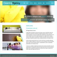 Reinigungsfirma 4 (Web-Vorlage) (PC) (Download)