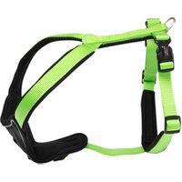 Hundegeschirr Professional Comfort grün, Breite: ca. 25 mm, Bauchumfang: ca. 35 – 40 cm