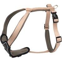 Hundegeschirr Professional Comfort beige, Breite: ca. 35 mm, Bauchumfang: ca. 90 – 110 cm