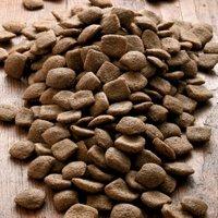 alsa-nature Vital Trockenfutter, 12 kg, Hundefutter trocken