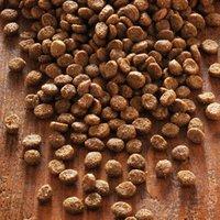 alsa-nature Petit Trockenfutter, 3 kg, Hundefutter trocken