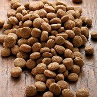 alsa-nature Big-Junior Medial Protein Trockenfutter, 3 kg, Hundefutter trocken