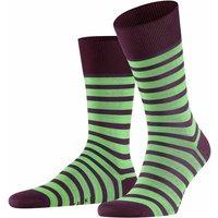 FALKE Even Stripe Men Socks, 39-42, Purple, Stripes, Cotton