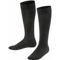 FALKE Family Kids Knee-high Socks, 23-26, Grey, Block colour, Cotton