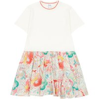Liberty Nolwenn Two-material Dress