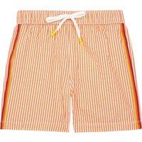 Striped Swimming Briefs