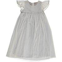 Silver Moon Tulle Dress