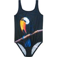 Toucan 1 Piece Swimsuit
