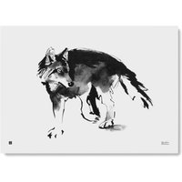 Poster 50x70cm - Wolf
