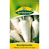 Quedlinburger Wurzelpetersilie 'Halblange'
