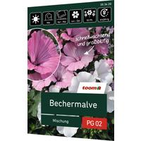 toom Bechermalve 'Mischung'