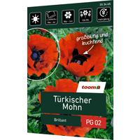 toom Türkischer Mohn 'Brillant'