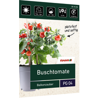 toom Buschtomate 'Balkonzauber'