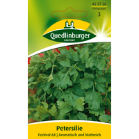 Quedlinburger Petersilie 'Festival 68'