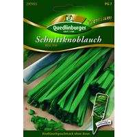 Quedlinburger Premium Schnittknoblauch 'Kiss me'