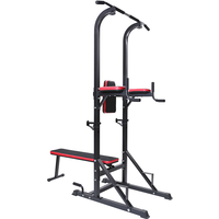 BodyTrain Power Tower and Weight Bench