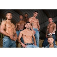 £6 instead of £14.50 for a standard ticket to the UK Pleasure Boys tour, or £15 for a VIP ticket with reserved seating, glass of bubbly, and a calendar - choose from three locations and save up to 59% - Boys Gifts
