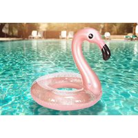 From £3.98 (from Pricebuster UK) for a giant pool or beach float - Pool Gifts