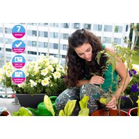Growing Food in Small Gardens Online Course | Wowcher