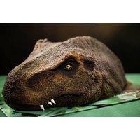 'Personalised T-rex Dinosaur Head Cake   Uk   Wowcher