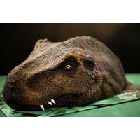 'T-rex Dinosaur Cake   Raspberry   Uk   Living Social