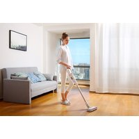 Image of Roidmi Cordless Vacuum Cleaner - Silver | Wowcher