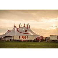 £11.25 for a side view ticket to Zippos Circus with popcorn, or £13.25 for a front view ticket with popcorn at Hamptons, Newcastle-under-Lyme - enjoy big top entertainment and save up to 39% - Theatre Gifts