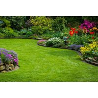 From £9 for a lawn treatment including seasonal fertiliser and weed or moss control from Greensleeves, Belfast - Weed Gifts