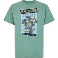 Weird Fish Peaky Organic Cotton Artist T-Shirt Ivy Size 5XL