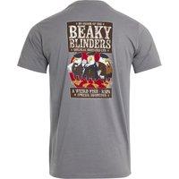 Weird Fish Beaky Blinders Organic Cotton RSPB Artist T-Shirt Frost Grey Size XL