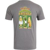 Weird Fish Weird Cricket Organic Cotton Artist T-Shirt Frost Grey Size 4XL