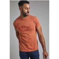 Weird Fish Raw Fish Organic Cotton Graphic T-Shirt Rust Size 5XL