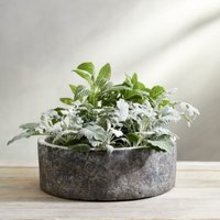 Earthenware Large Planter, Natural, One Size